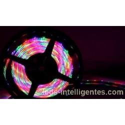 Rouleau Led 5m 12V - SMD3528 - 300 Leds RGB