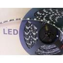 Rouleau Led 5m 12V - SMD5050 - 300 Leds Blanc Chaud et Circuit Noir