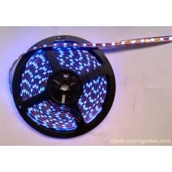 Rouleau Led 5m 12V / 24V RGB - SMD5050 - 300 Leds